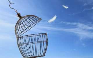 Как устроиться на работу к Светлане Лободе: персонал для бизнеса и дома