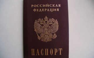 Электронный паспорт гражданина России: сроки, внешний вид, отличия