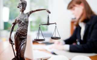 Сколько в России юристов в настоящее время