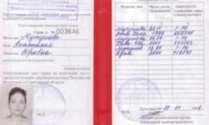 Льготы многодетным семьям в Дагестане