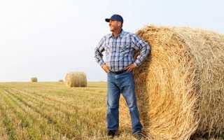 Повышение пенсий сельским пенсионерам: кому и на сколько повысят