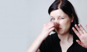 Куда жаловаться на запах в подъезде: три варианта подачи жалобы