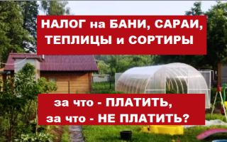 ИФНС пояснила, за какие постройки на дачах (теплицы, бани, сараи) нужно платить налог