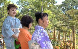 Какая пенсия в Японии: размер и какие документы нужны для оформления