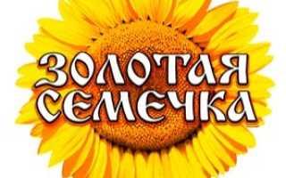 Лучшее рафинированное масло России: исследование качества продукта от Роскачества