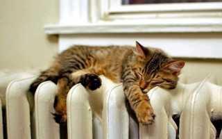 Общедомовое имущество не оснащено радиаторами отопления, но люди платят ОДН за тепло: законно ли это
