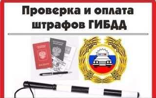 Проверка штрафов ГИБДД в «Яндекс»: по номеру прав и по свидетельству регистрации ТС