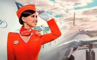 Зарплата стюардесс: анализ дохода бортпроводников за последние 5 лет в России и мире