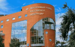 Отмена СНИЛС в России: чем заменили свидетельство