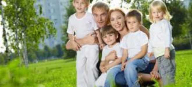 Льготы многодетным семьям в Свердловской области в 2020 году: полный список