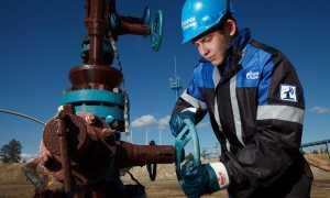 Сколько зарабатывают нефтяники в России: данные о доходе за 6 лет
