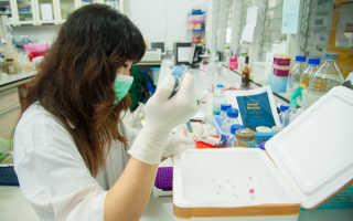 Сколько стоит анализ ДНК: обзор стоимости в России и других странах